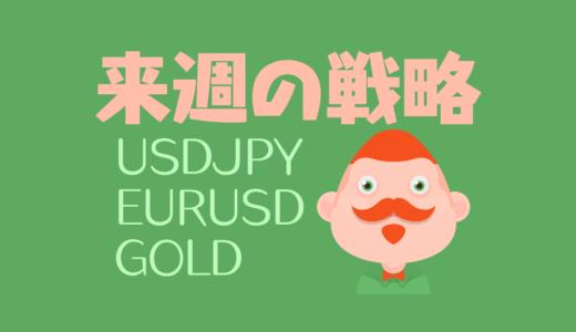 【戦略】大統領選を迎えたドル円|入るなら今!なゴールド|綺麗なトレンドユーロドル