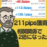 211pips獲得!FX相関関係を利用して利益を倍にしました